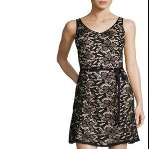 Hayden Shealth Lace Cocktail Black/nude Dress